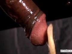 Fetish cock teasing by Handdominance